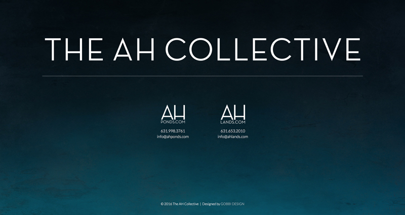 The AH Collective Website